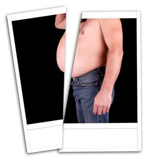 Fatty body